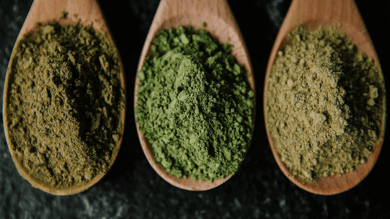 How Green Malay Kratom Can Change Your Mind Kats Botanicals
