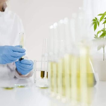 Why and How We Lab Test Our CBD
