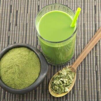 Moringa supplements